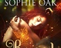 Bound by Lexi Blake writing as Sophie Oak