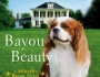 Cover Reveal: Bayou Beauty by Lexi Blake